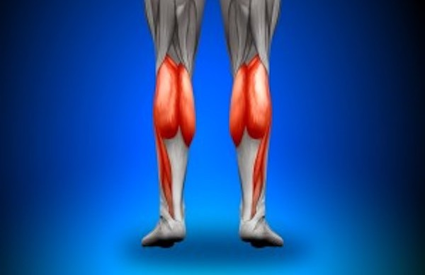 膝が痛い!そんな時にほぐしたい筋肉その5【下腿三頭筋】