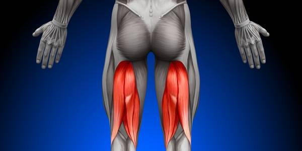 膝が痛い!そんな時にほぐしたい筋肉その4【ハムストリング】
